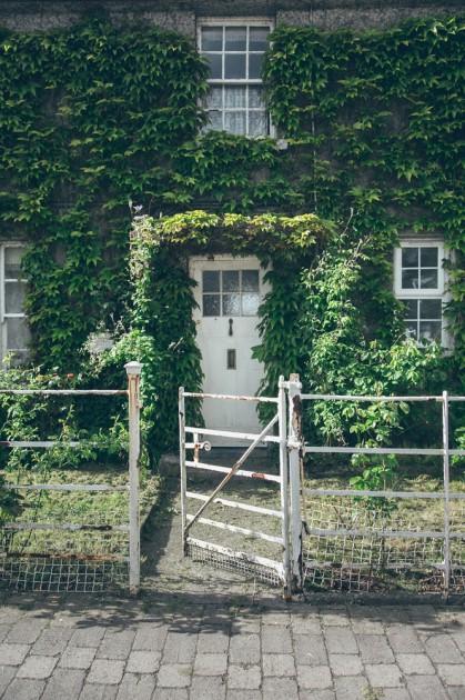 Tipperary. İrlanda için söylenen Zümrüt Adası boşuna değilmiş - her yeri yemyeşil.