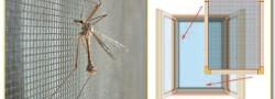 Pimapen sineklik